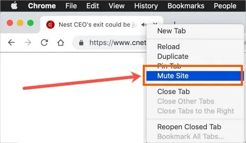 Отключить сайт в Chrome