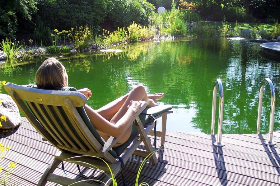 Swimmingpool oder Badeteich Vorteile und Nachteile der Lsungen  DIE WELT