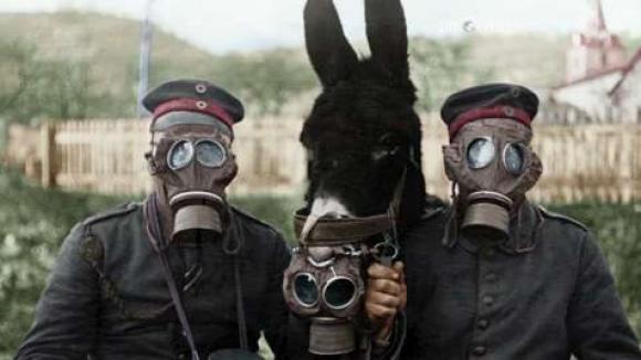 Giftgas wurde erstmals im ersten Weltkrieg eingesetzt.
