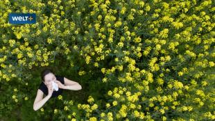 Allergy season: the little-known remedy for hay fever