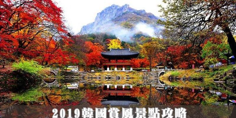 2019韓國賞楓景點攻略|楓葉、銀杏、紫芒通通有 超過20個賞風必看景點  交通資訊