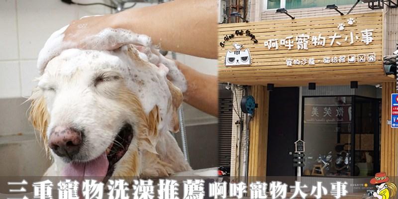 三重寵物美容推薦|A-Hoo Pet Shop 啊呼寵物大小事 寵物美容-貓旅館 用心推薦