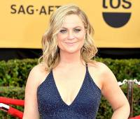 Amy Poehler Unveils New Red Hair Color: Photo - Us Weekly