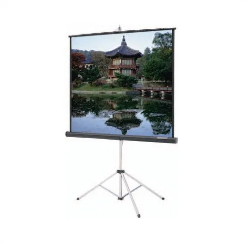Carpeted Picture King Glass Beaded Portable Projection Screen Viewing Area: 72