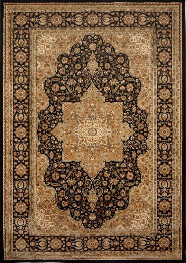 Triumph Woven Black Oriental Rug Rug Size: Rectangle 5'2