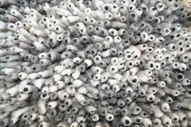 Eyeball Hand-Woven Gray Area Rug Rug Size: Rectangle 4' x 6'
