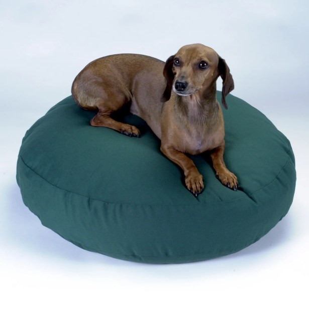 Round Dog Pillow Color: Olive, Size: Small (24
