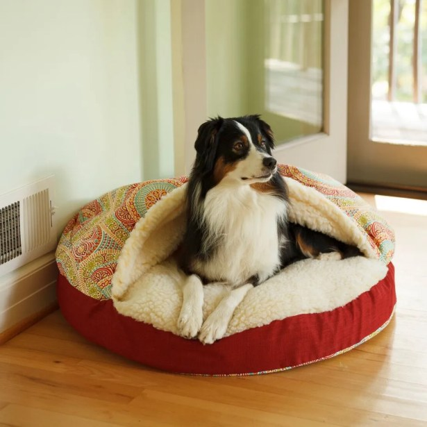 Wag Indoor/Outdoor Cozy Cave Hooded Dog Bed Size: Extra Large (45