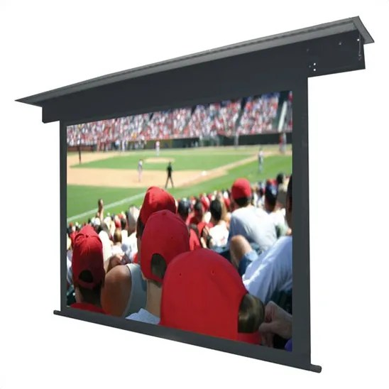 Lectric II Matte Black Electric Projection Screen Low Voltage Motor Viewing Area: 110
