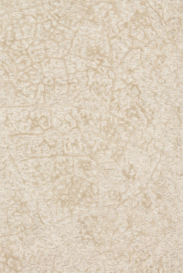 Juneau Hand-Hooked Beige Area Rug Rug Size: Rectangle 9'3