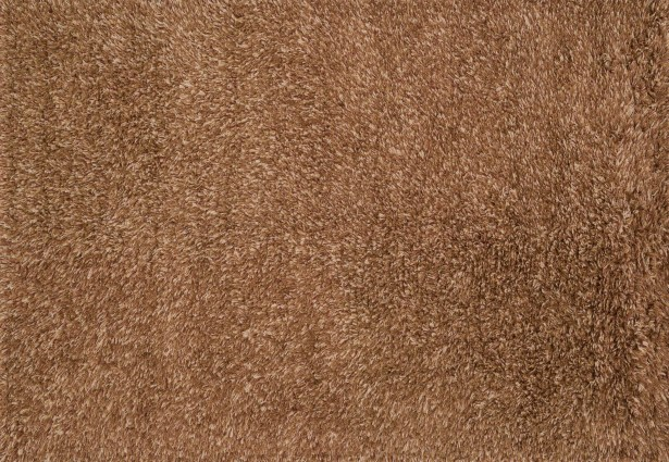 Turco Hand-Woven Rust Area Rug Rug Size: Square 7'