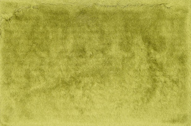 Hersi Hand-Tufted Citron Area Rug Rug Size: Rectangle 3'6