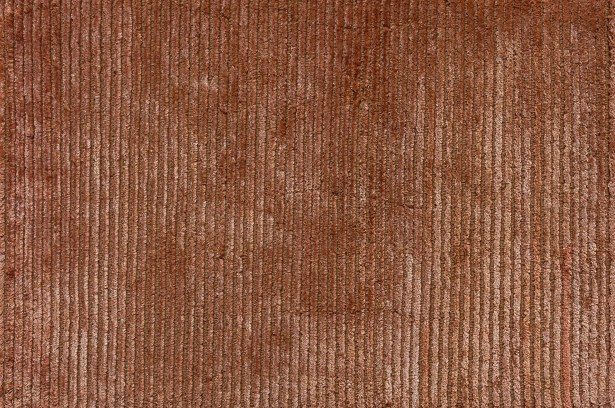 Turek Hand-Knotted Terracotta Area Rug Rug Size: Rectangle 5'6