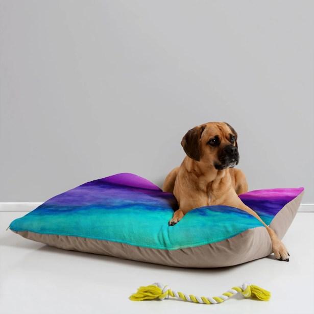 Jacqueline Maldonado The Sound Pet Bed