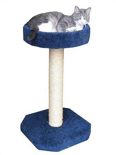 Bed Sisal Scratching Post Color: Tan