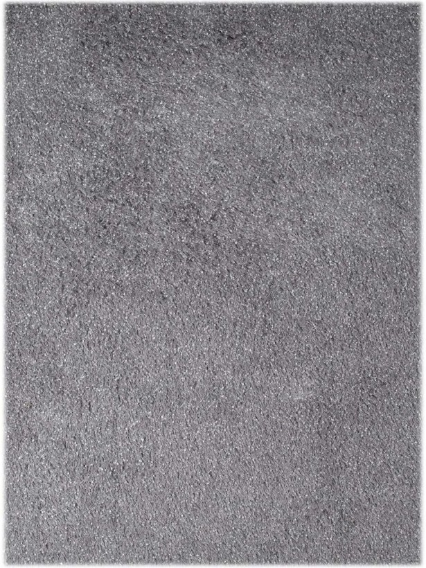 Bright Silver Area Rug Rug Size: Rectangle 8' x 11'