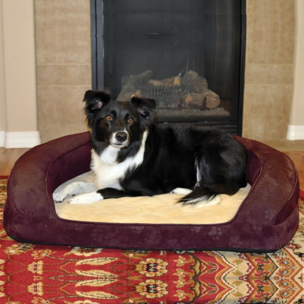 Deluxe Ortho Sleeper Bolster Dog Bed Size: Medium (30