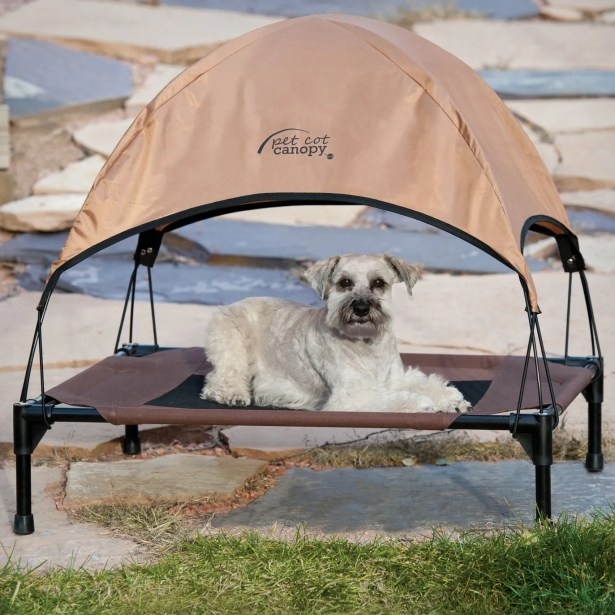 Pet Cot Canopy Bed Accessory Size: Large (28