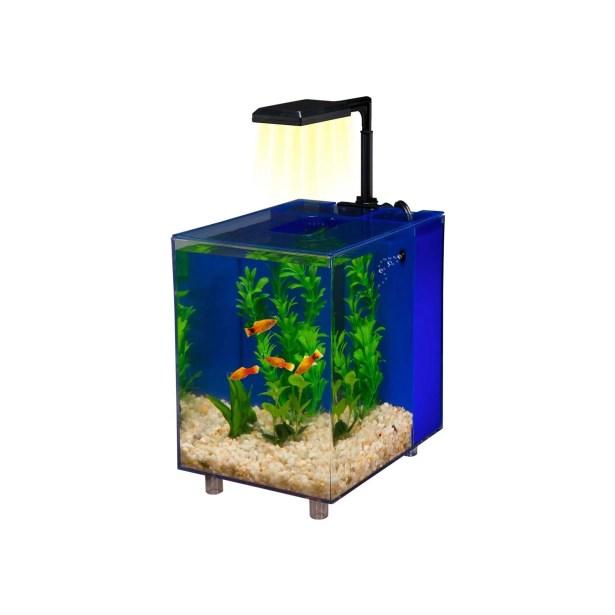 Prism 2 Gallon Desktop Aquarium Tank Color: Blue, Size: 10.5