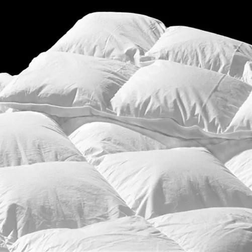 Limoges Down Comforter Size: California King