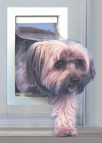 Small Patio Pet Door Color: Mill