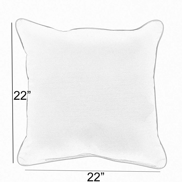 Annabella Indoor/Outdoor Throw Pillow Size: 22