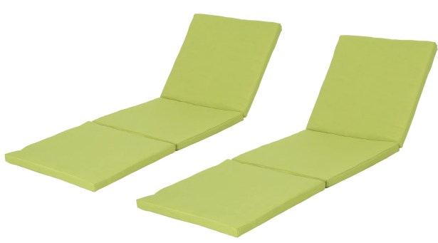 Indoor/Outdoor Chaise Lounge Cushion Fabric: Green