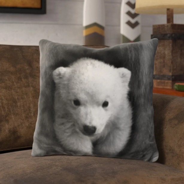 Plunkett Baby Bear Throw Pillow