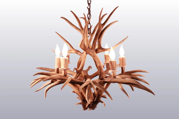 Brackenridge 6-Light Candle-Style Chandelier
