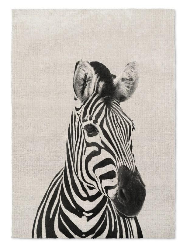 Millender Zebra Gray/Black Area Rug Size: Rectangle 8' x 10'