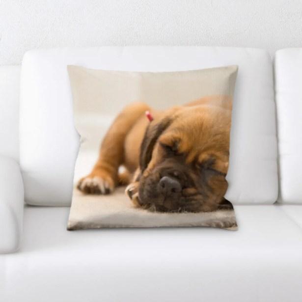 Aiden Dog Portrait (9) Throw Pillow