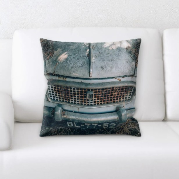Harden Old and Abandoned (171) Throw Pillow
