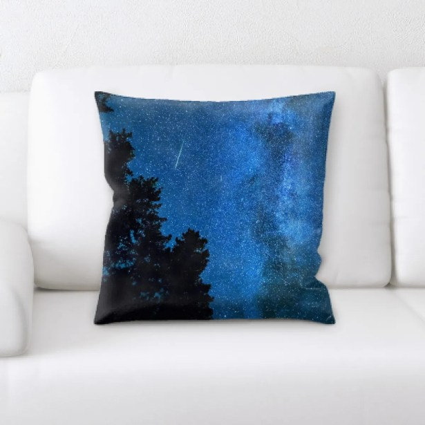 Portrait Style Photography (162) Throw Pillow