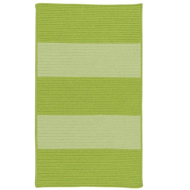Javen Hand-Braided Green Indoor/Outdoor Area Rug Rug Size: Rectangle 9' x 12'