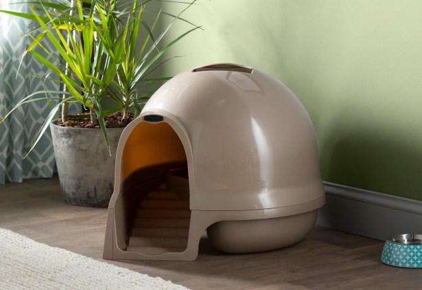 Earl Dome Clean Step Litter Box Color: Titanium