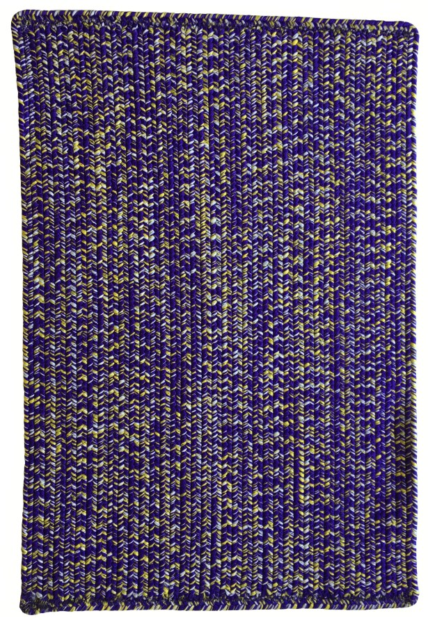 One-of-a-Kind Aukerman Hand-Braided Purple/Gold Indoor/Outdoor Area Rug Rug Size: Rectangle 8' x 11'