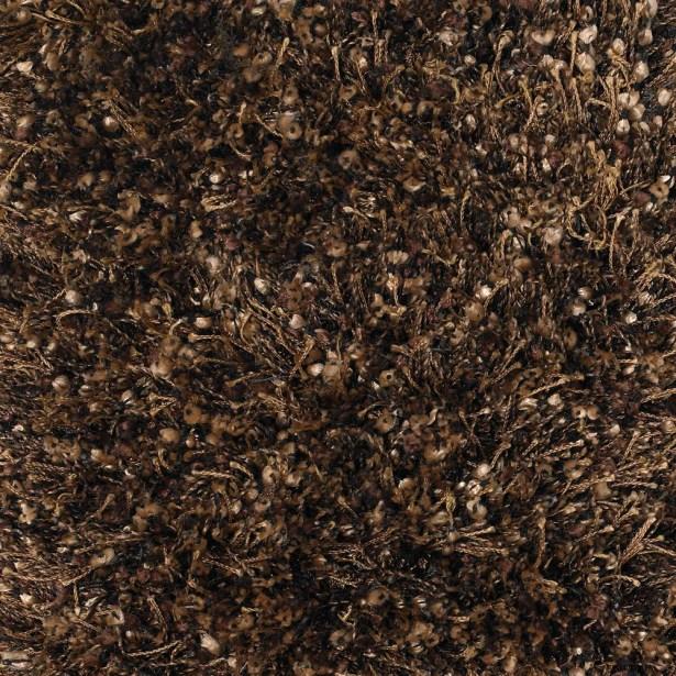 Zucker Brown Area Rug Rug Size: Round 7'9