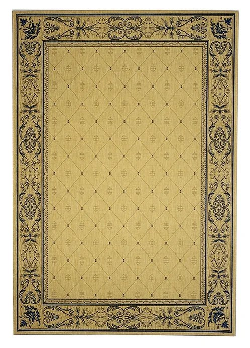 Short Natural / Blue Transitional Outdoor Area Rug Rug Size: Rectangle 2' x 3'7
