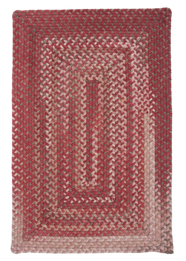 Gloucester Rhubarb Braided Red Area Rug Rug Size: Rectangle 2' x 4'