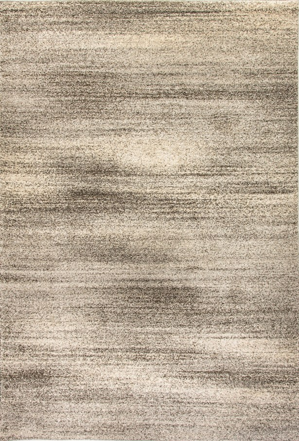 Terrio Light Gray Area Rug Rug Size: Rectangle 7'10
