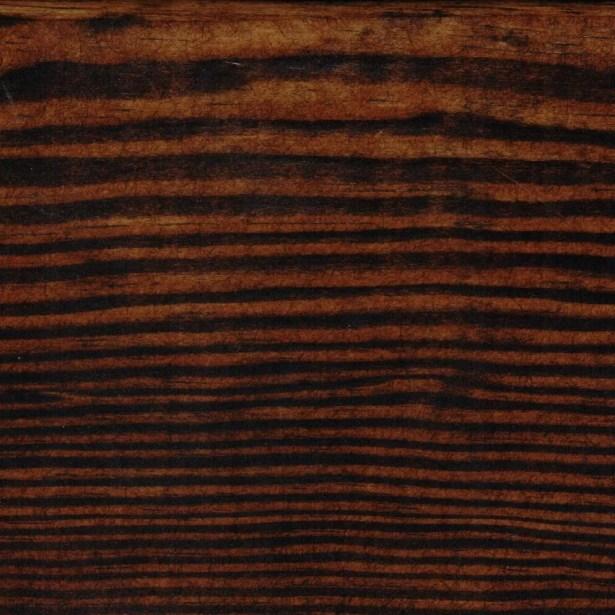 Trundle Unit Color: Rich Tobacco, Size: Twin Trundle Bed
