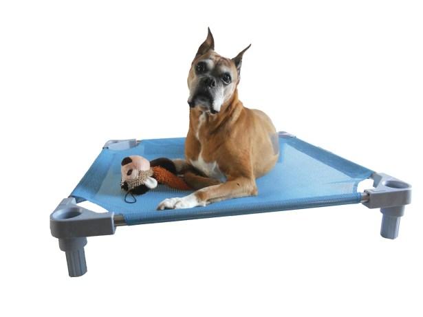 Elevated Dog Cot Size: Large - 34