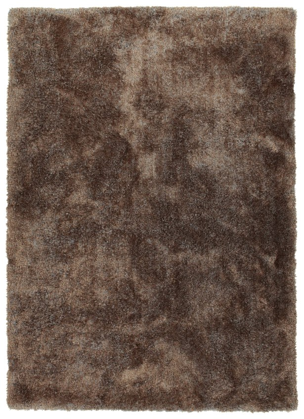 Bieber Brown Area Rug Rug Size: Rectangle 8' x 10'