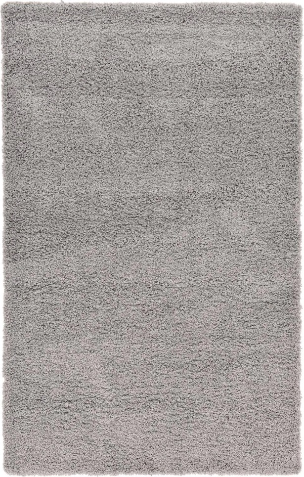 Affinity Hand-woven Silver Area Rug Rug Size: Rectangle 5' x 8'