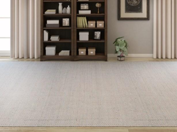 Light Hand-Woven Gray Area Rug Rug Size: Rectangle 9' x 13'