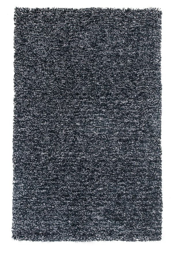 Bouvier Heather Black Area Rug Rug Size: 5' x 7'