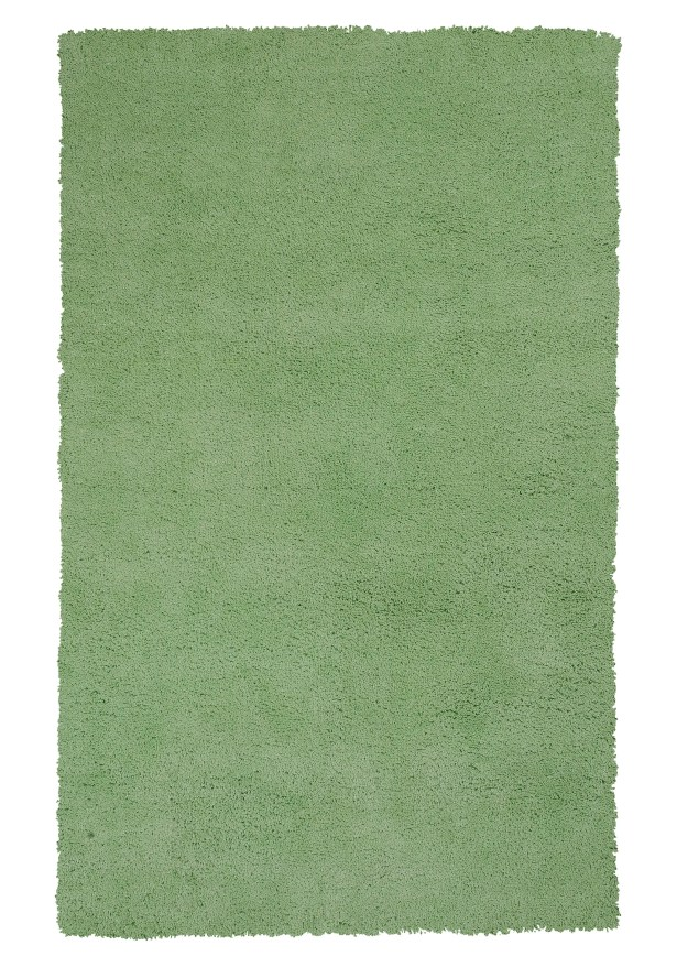 Bouvier Spearmint Green Area Rug Rug Size: Rectangle 8' x 11'
