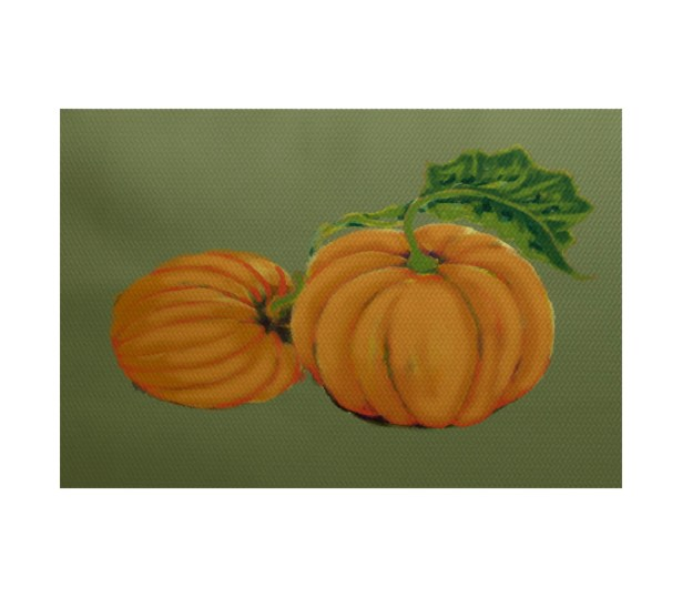 Pumpkin Patch Holiday Print Orange Indoor/Outdoor Area Rug Rug Size: Rectangle 3' x 5'