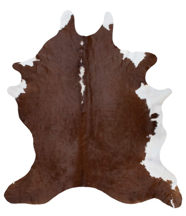 Anacapo Hand-Woven Brown Indoor Area Rug