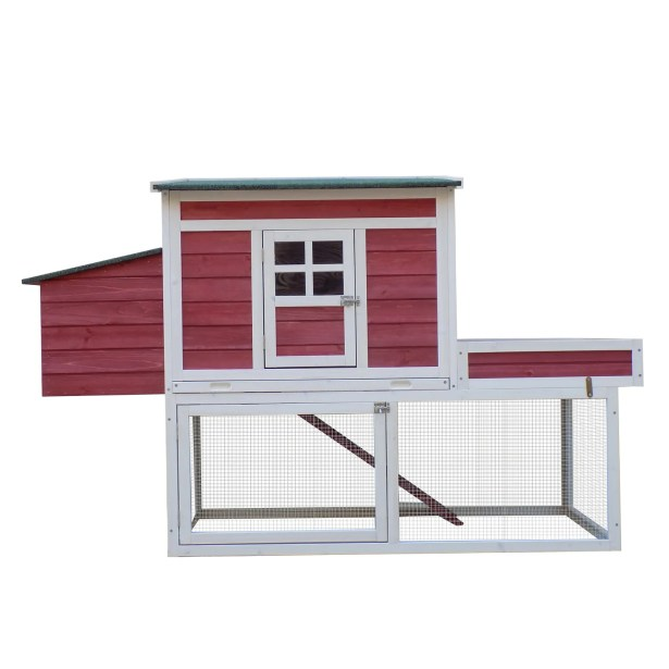 Basil Chicken Coop with Display Top, Run Area and Nesting Box
